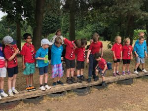 Beavers sorting themselves into age order