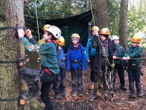 Billesley Cubs about to climb a tree