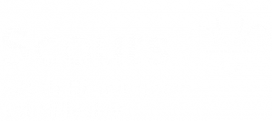 325th Birmingham, 1st Billesley Scouts Logo - Hollow