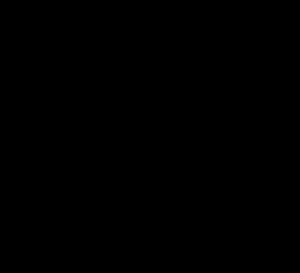 Black Fleur-de-Lys Logo